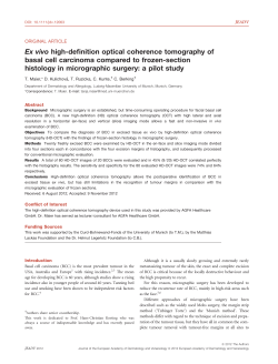 Ex vivo high-definition optical coherence tomography of