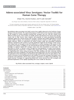Adeno-associated Virus Serotypes: Vector Toolkit for Human Gene Therapy R A