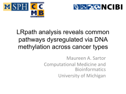 LRpath analysis reveals common pathways dysregulated via DNA methylation across cancer types