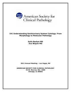 191 Understanding Genitourinary System Cytology: From Morphology to Molecular Pathology