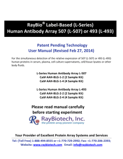 RayBio Label-Based (L-Series) Human Antibody Array 507 (L-507) or 493 (L-493)
