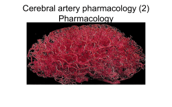 Cerebral artery pharmacology (2) Pharmacology