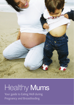 Healthy Mums Your guide to Eating Well during Pregnancy and Breastfeeding