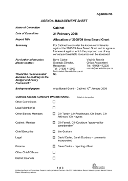 Cabinet 21 February 2008 Allocation of 2008/09 Area Based Grant