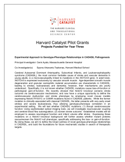 Harvard Catalyst Pilot Grants Projects Funded for Year Three