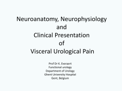 Neuroanatomy, Neurophysiology and Clinical Presentation of
