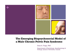 + The Emerging Biopsychosocial Model of a Male Chronic Pelvic Pain Syndrome