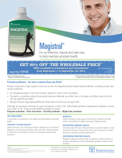 Magistral Get 20% off the wholesale price