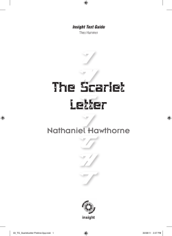 The Scarlet Letter Nathaniel Hawthorne Insight Text Guide