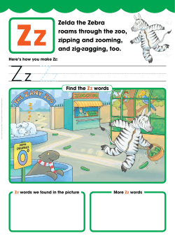 Zz Zelda the Zebra roams through the zoo, zipping and zooming,