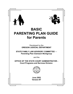BASIC PARENTING PLAN GUIDE for Parents