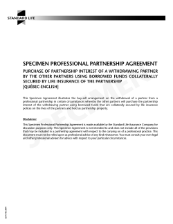 SPECIMEN PROFESSIONAL PARTNERSHIP AGREEMENT