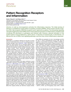 Review Pattern Recognition Receptors and Inflammation Leading Edge