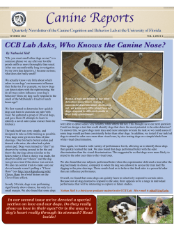 Canine Reports CCB Lab Asks, Who Knows the Canine Nose?