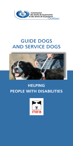 GUIDE DOGS AND SERVICE DOGS HELPING PEOPLE WITH DISABILITIES