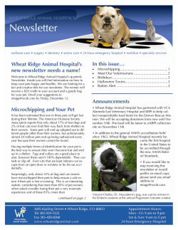 Newsletter In this issue… Wheat Ridge Animal Hospital's new newsletter needs a name!