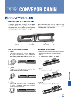 CONVEYOR CHAIN CONSTRUCTION OF CONVEYOR CHAIN