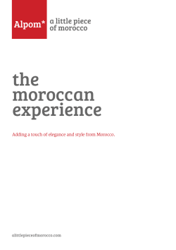 the moroccan experience Adding a touch of elegance and style from Morocco.
