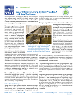 Super-Intensive Shrimp System Provides A Look Into The Future Y S I Environmental