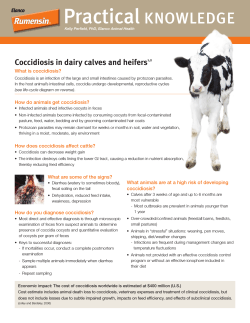 Practical KNOWLEDGE Coccidiosis in dairy calves and heifers