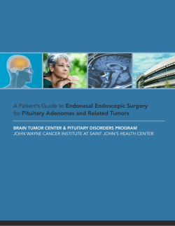 A Patient's Guide to Endonasal Endoscopic Surgery
