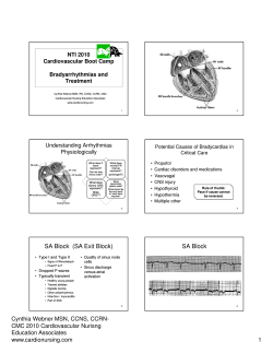 NTI 2010 Cardiovascular Boot Camp Bradyarrhythmias and Treatment