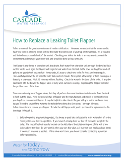 How to Replace a Leaking Toilet Flapper