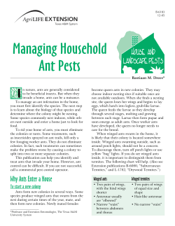 Managing Household Ant Pests I