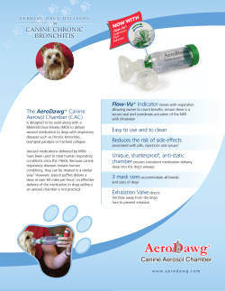 CANINE CHRONIC BRONCHITIS Flow-Vu AeroDawg