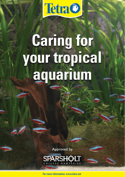 Caring for your tropical aquarium Approved by