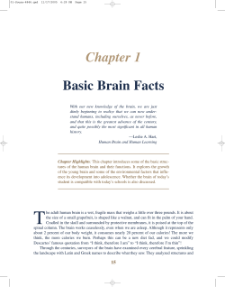 Chapter 1 Basic Brain Facts