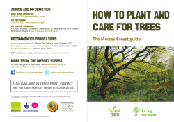 HOW TO PLANT AND CARE FOR TREES The Mersey Forest guide