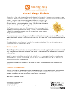 Mustard Allergy: The facts