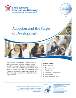 Adoption and the Stages of Development