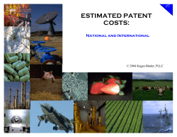 ESTIMATED PATENT COSTS:  #7
