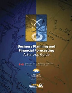 Business Planning and Financial Forecasting A Start-up Guide Ministry of Small Business and