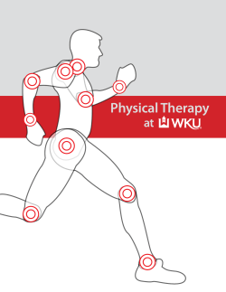 Physical Therapy at
