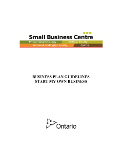 BUSINESS PLAN GUIDELINES START MY OWN BUSINESS