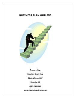 BUSINESS PLAN OUTLINE Prepared by:  Stephen Gizzi, Esq.