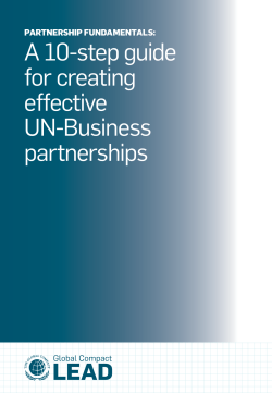 A 10-step guide for creating effective UN-Business
