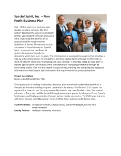 Special Spirit, Inc. – Non Profit Business Plan