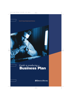 Business Plan Guide to producing a e Ernst & Young Entrepreneurial Services