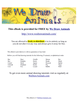 y We Draw Animals  freely re-distribute