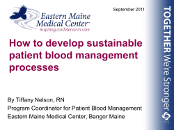 How to develop sustainable patient blood management processes