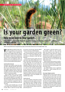 Is your garden green? y How to be kind to your garden www.bcb.uwc.ac.za/envfacts