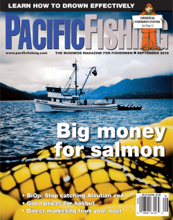 Big money for salmon