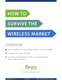 HOW TO SURVIVE THE WIRELESS MARKET OVERVIEW: