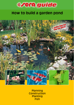 How to build a garden pond Planning Construction Planting