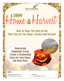 How To Make The Most Of Fall Showcasing Community Events,