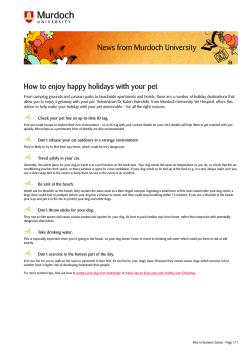 How to enjoy happy holidays with your pet